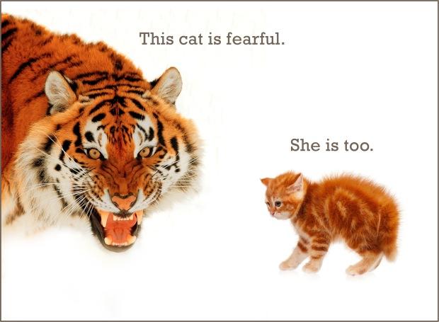 fearful_109227560